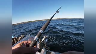 2021 г Морская рыбалка Отпуск на Белом море Лов трески