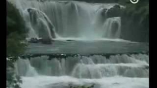 Download Prirodna bastina BIH rijeka Una