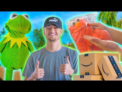 Kermit the Frog MAILS Elmo in an Amazon Package! (Ft Best in Class)