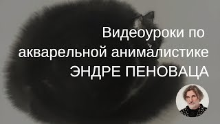 Видеоуроки Акварельная анималистика с Эндре Пеновацем. Приглашение