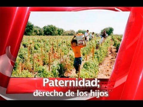 Paternidad derecho de los hijos youtube for Derecho de paternidad