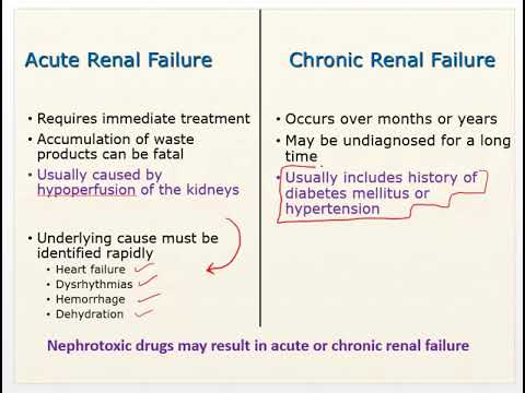 Chapter 24 Video Renal Failure And Diuretics Youtube