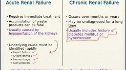 hqdefault - Diuretics In Chronic Kidney Disease