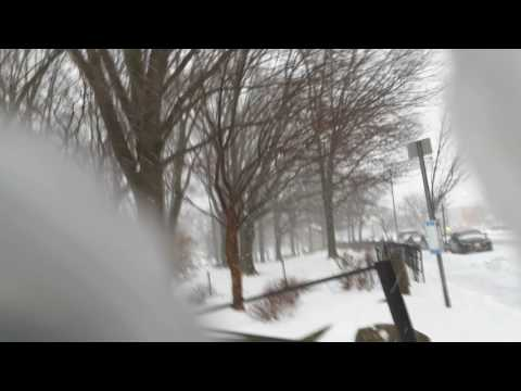 Winter Storm Stella hits New York Bronx (Strong Winds 50 MPH Blizzard)