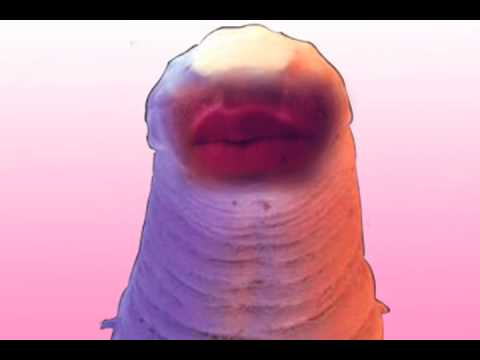dating worms