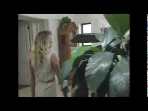 Deidre Holland - Adult Film Star - Fan Tribute 1