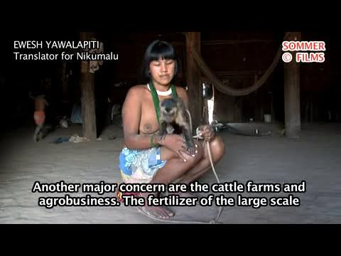 Nikumalu Yawalapiti  - preocupada-plantações de soja e fazendas na nascente do Xingu