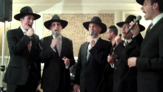 ACHEINU SHAPIRO BROTHERS SINGING AT A CHUPAH