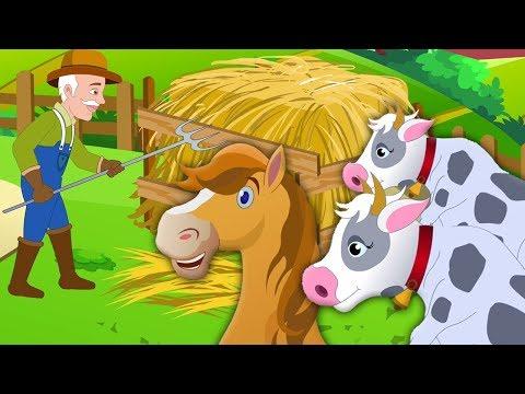 Antigua rima MacDonald   niños canciones   Old MacDonald Had A Farm