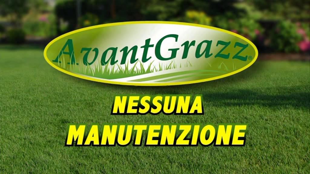 Avantgrazz e il tuo prato sempre in ordine youtube for Prato manutenzione