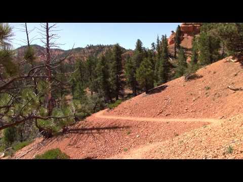 Red Canyon Utah  Birds Eye Trail