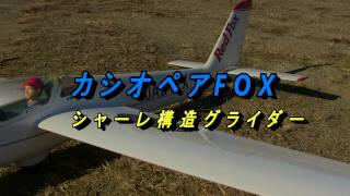 FOX2.1-S 全長:1200mm 全幅:2160mm 全備重量:バルサシャーレ 160...