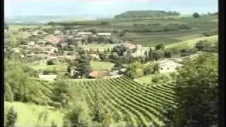 Cognac distilleries part 1