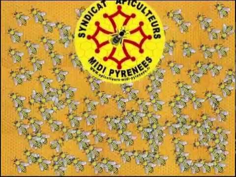 Voeux Syndicat Apiculteurs Midi Pyrénées 2015