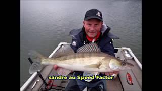 Pêche en verticale au Speed Factor