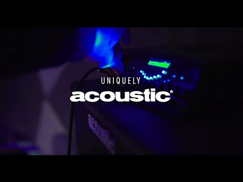 Acoustic Amplification - Class D NEO Bass Amps