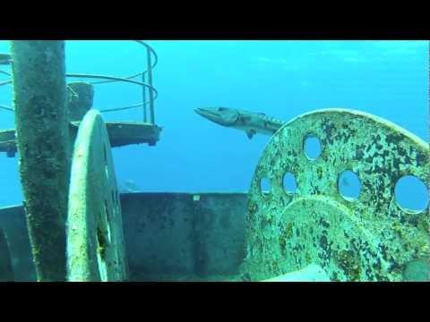 Free diving Grand Cayman, Ex USS kittiwake.