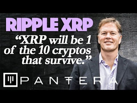 ripple-xrp:-pantera-capital-ceo-says-xrp-will-be-1-of-10-cryptos-to-survive