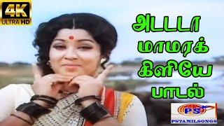 Adada Maamara Kiliye ||அடடா மாமரக்கிளியே || S. Janaki ||Giramiya Love Melody H D Song