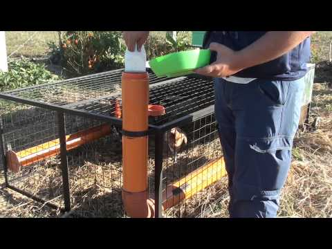 How to design chicken tractors at MADE Farms Philippines