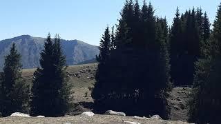 Кыргызстан. Иссык-куль. Григорьевское ущелье.