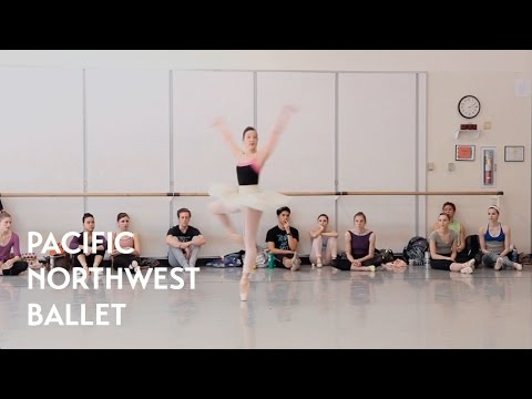 Swan Lake - Act 3 Coda Fouettes with Carrie Imler