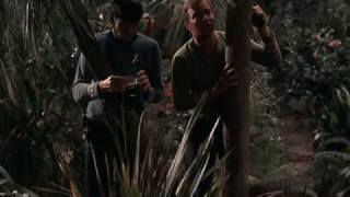 Star Trek - Fire On the Forcefield