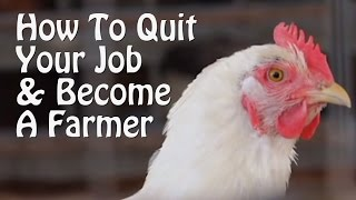 Quit Your Job and Farm - PART 1 - 10 Small Farm Ideas, from Organic Farming to Chickens & Goats.