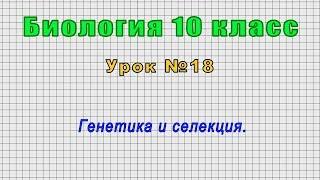 Биология 10 класс (Урок№18 - Генетика и селекция.)