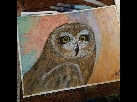 OWL WATERCOLOR SPEEDPAINT! - ft Watercolor, Pastels, Charcoal, Gel Pens, and Fine Liners