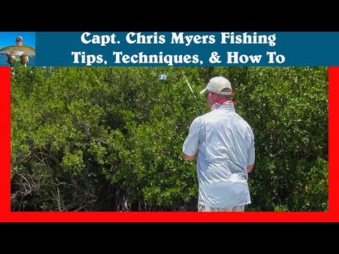 Casting Under Mangrove Trees - Spinning Reel Tips
