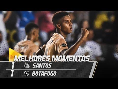 Santos 1 x 1 Botafogo | MELHORES MOMENTOS | Brasileirão (21/11/18)