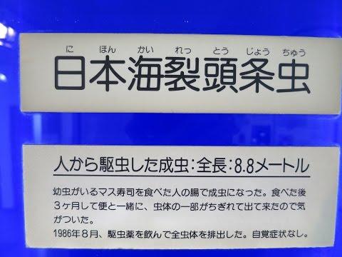 虫 日本 海 条 裂 頭 裂頭条虫症