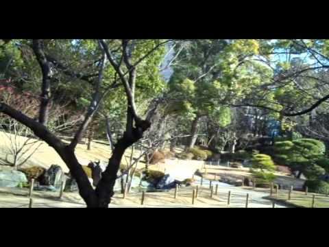 In Japan - Showcasing Osaka