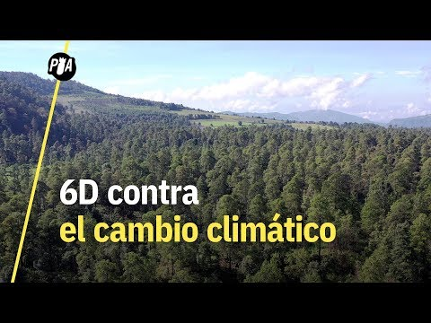 #6D It's Now: contra el cambio climático