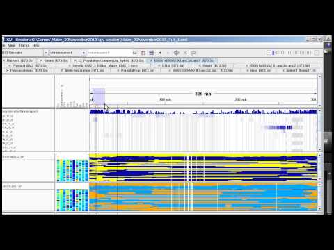 Tutorial Part 3   QTL Mapping