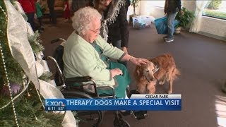 Therapy dogs make a special visit