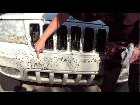 Ceramlock Love Bugs