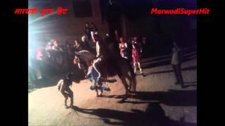 ज़बर्दस्त Marwadi घोड़ी Horse Dance Rajasthan Shaadi Video