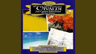 Invierno (Winter) - Allegro Non Molto: Concerto No. 4 in F minor, Op. 8, RV 297