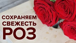 видео Что сделать, чтобы цветы дольше стояли в вазе