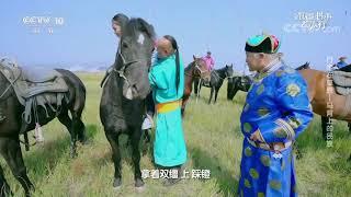 [跟着书本去旅行]零基础骑马,应该记住哪几点?马镫是什么?| 课本中国