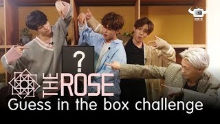FEAR VS THE ROSE (GUESS IN THE BOX CHALLENGE)