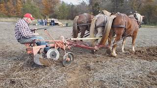 Horse Drawn Plow Day