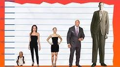 Combien mesure Angelina Jolie ? - Comparé Aux Autres Célébrités !