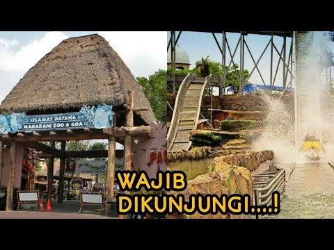 must-know!-7-attractions-in-lamongan-that-are-worth-a-visit