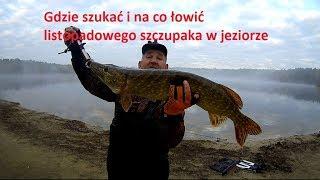 Gdzie szukać i na co łowić listopadowego szczupaka w jeziorze. video