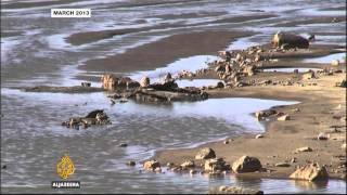 Al Jazeera : Ethiopia Renaissance Dam Concerns About Environmental Impact