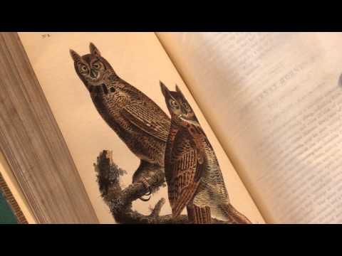 AUDUBON, John James. The Birds of America, [1839-]1840�. Peter Harrington Rare Books.