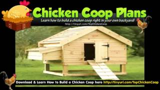 Hen Houses & Chicken Pens Plans Design